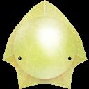 , Starfish icon