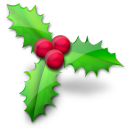 holly, christmas icon