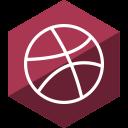 dribbble, media, social, gloss, hexagon icon