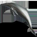 dolphin, animal icon