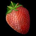 strawberry,fruit icon